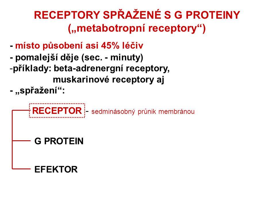 """RECEPTORY SPŘAŽENÉ S G PROTEINY (""""metabotropní receptory"""") - místo působení asi 45% léčiv - pomalejší děje (sec. - minuty) -příklady: beta-adrenergní"""