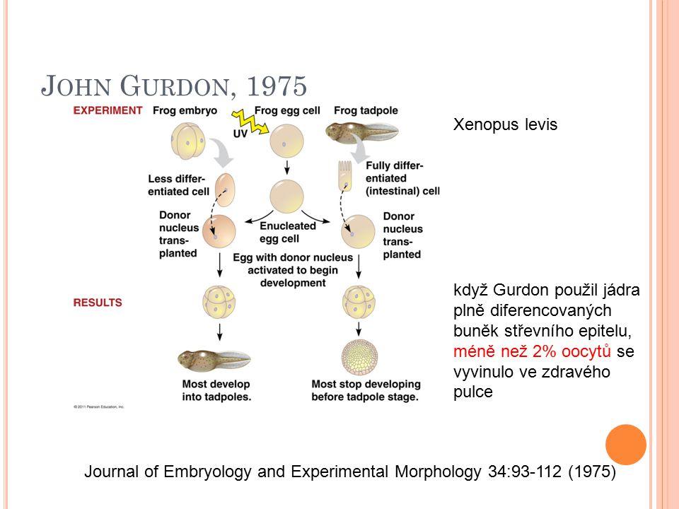 J OHN G URDON, 1975 Journal of Embryology and Experimental Morphology 34:93-112 (1975) když Gurdon použil jádra plně diferencovaných buněk střevního e