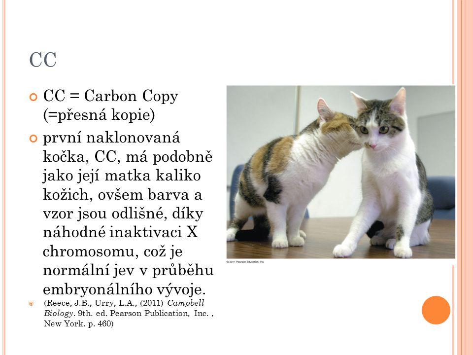 CC CC = Carbon Copy (=přesná kopie) první naklonovaná kočka, CC, má podobně jako její matka kaliko kožich, ovšem barva a vzor jsou odlišné, díky náhod