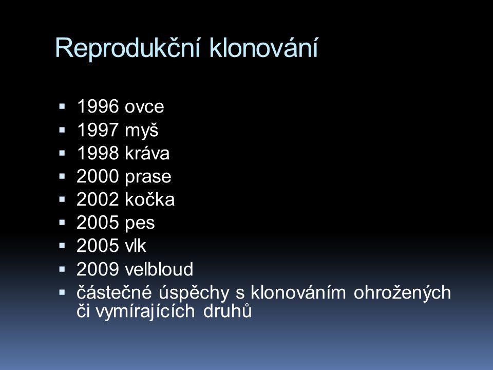 Reprodukční klonování  1996 ovce  1997 myš  1998 kráva  2000 prase  2002 kočka  2005 pes  2005 vlk  2009 velbloud  částečné úspěchy s klonová