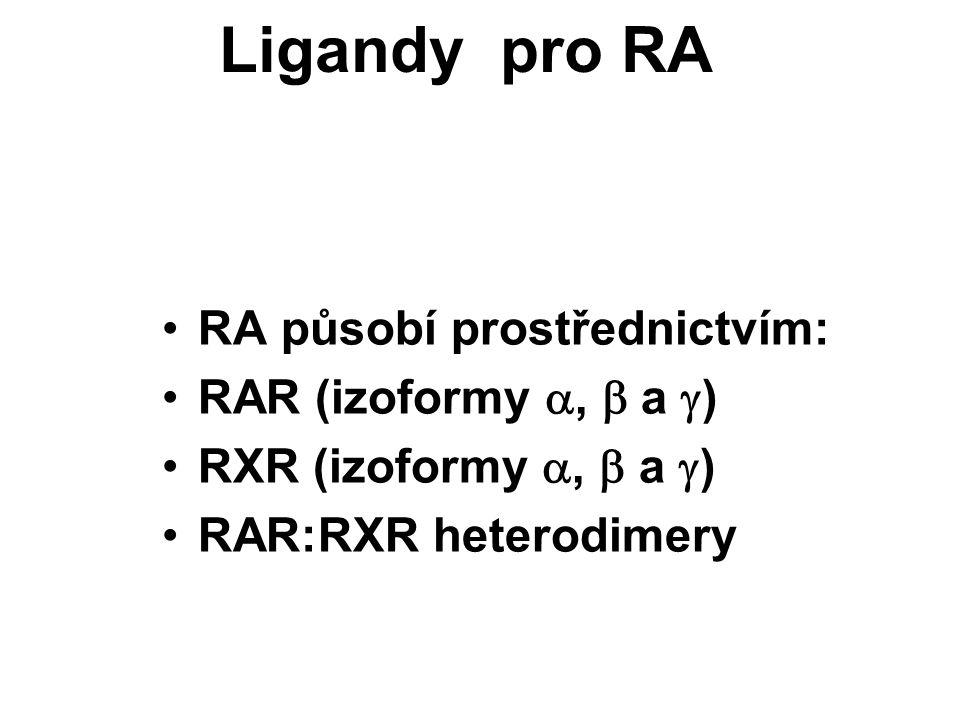 Ligandy pro RA RA působí prostřednictvím: RAR (izoformy ,  a  ) RXR (izoformy ,  a  ) RAR:RXR heterodimery