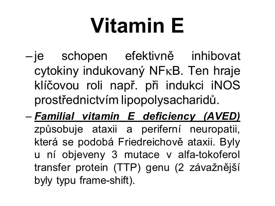 Vitamin E –je schopen efektivně inhibovat cytokiny indukovaný NF  B.