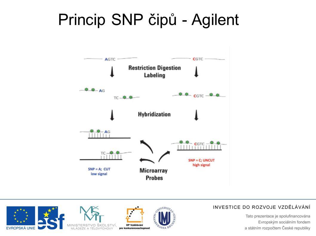 Princip SNP čipů - Agilent