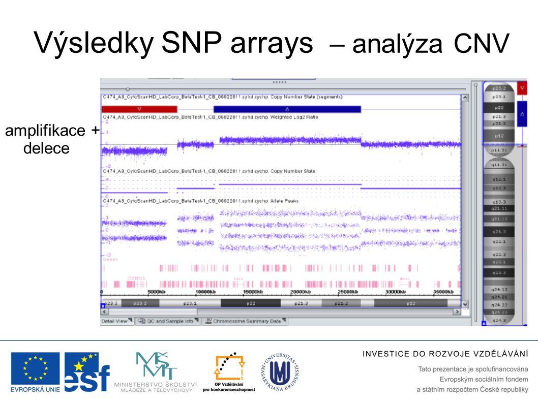 Výsledky SNP arrays – analýza CNV SNP Array → amplifikace + delece