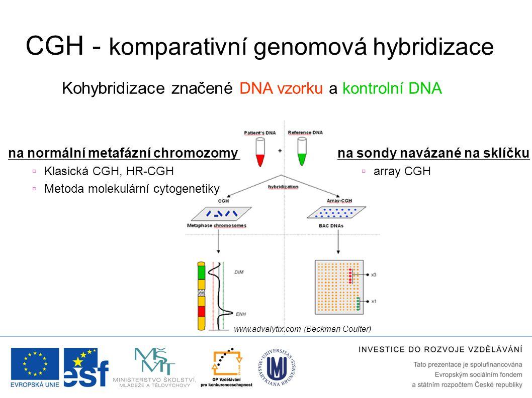 CGH - komparativní genomová hybridizace Kohybridizace značené DNA vzorku a kontrolní DNA www.advalytix.com (Beckman Coulter) na sondy navázané na sklí
