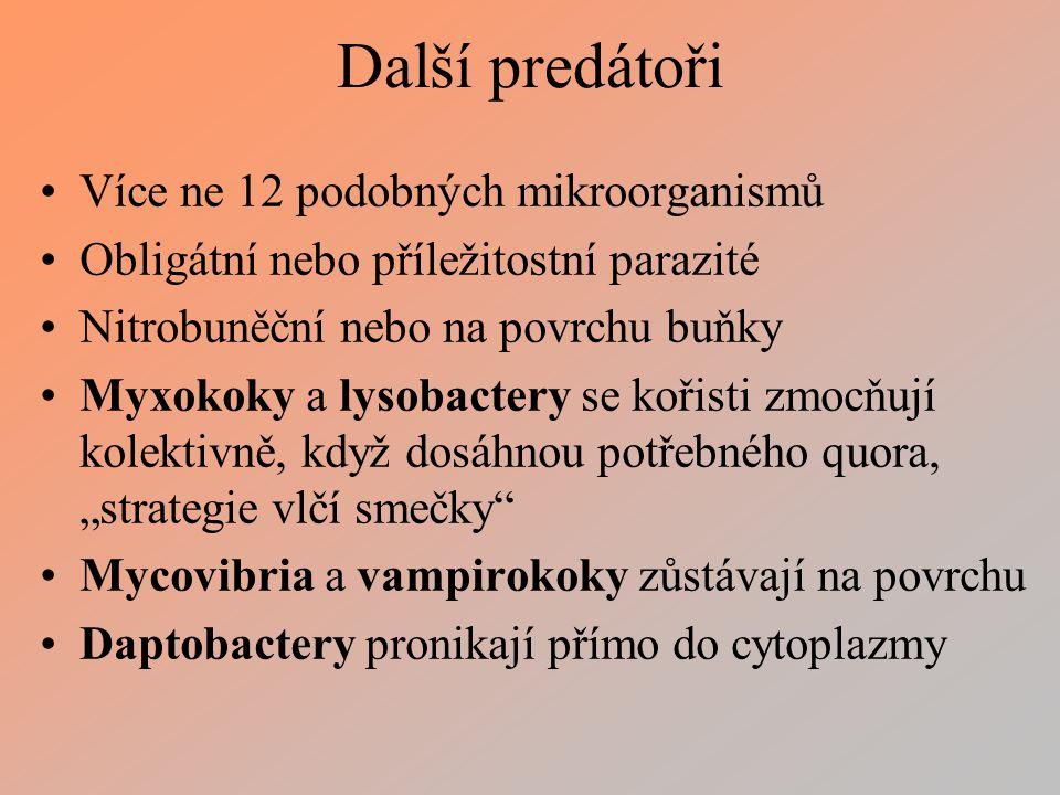 """Další predátoři Více ne 12 podobných mikroorganismů Obligátní nebo příležitostní parazité Nitrobuněční nebo na povrchu buňky Myxokoky a lysobactery se kořisti zmocňují kolektivně, když dosáhnou potřebného quora, """"strategie vlčí smečky Mycovibria a vampirokoky zůstávají na povrchu Daptobactery pronikají přímo do cytoplazmy"""
