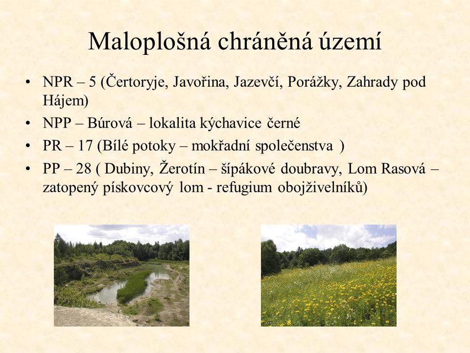 Maloplošná chráněná území NPR – 5 (Čertoryje, Javořina, Jazevčí, Porážky, Zahrady pod Hájem) NPP – Búrová – lokalita kýchavice černé PR – 17 (Bílé pot