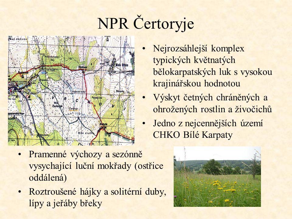 NPR Čertoryje Nejrozsáhlejší komplex typických květnatých bělokarpatských luk s vysokou krajinářskou hodnotou Výskyt četných chráněných a ohrožených r