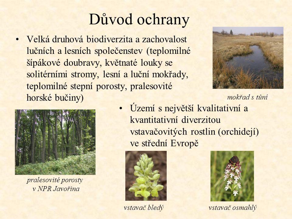 Důvod ochrany Velká druhová biodiverzita a zachovalost lučních a lesních společenstev (teplomilné šípákové doubravy, květnaté louky se solitérními str
