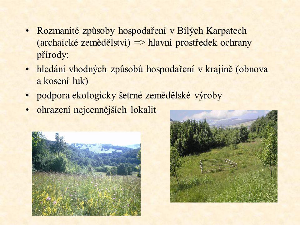 Rozmanité způsoby hospodaření v Bílých Karpatech (archaické zemědělství) => hlavní prostředek ochrany přírody: hledání vhodných způsobů hospodaření v