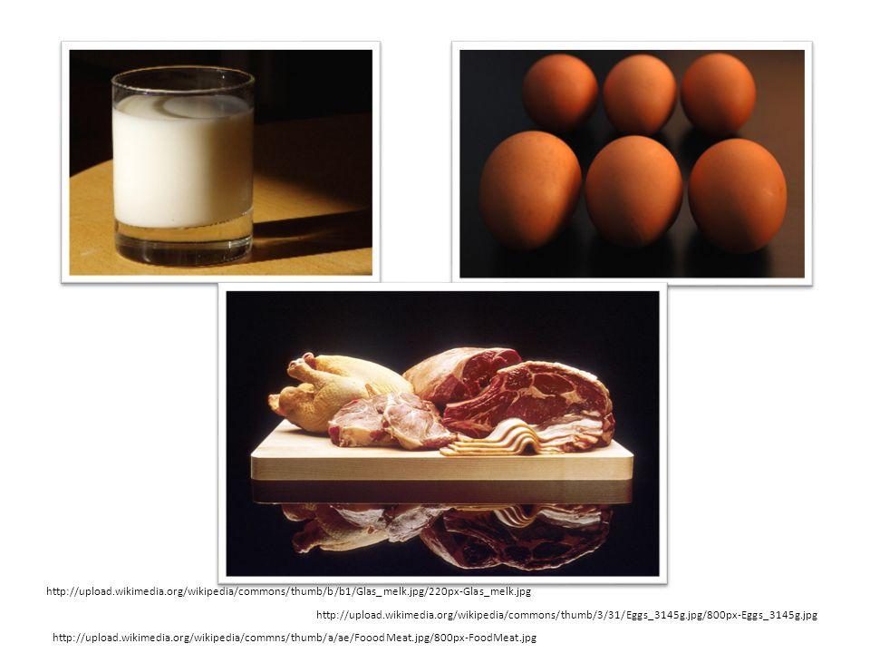http://upload.wikimedia.org/wikipedia/commons/thumb/3/31/Eggs_3145g.jpg/800px-Eggs_3145g.jpg http://upload.wikimedia.org/wikipedia/commons/thumb/b/b1/Glas_melk.jpg/220px-Glas_melk.jpg http://upload.wikimedia.org/wikipedia/commns/thumb/a/ae/FooodMeat.jpg/800px-FoodMeat.jpg