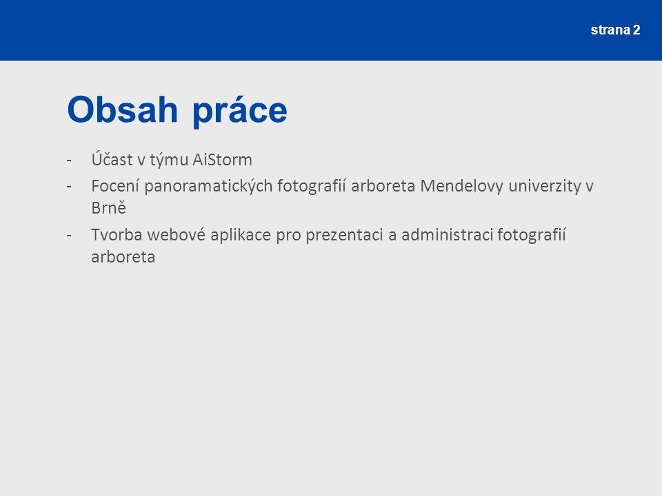 strana 2 Obsah práce -Účast v týmu AiStorm -Focení panoramatických fotografií arboreta Mendelovy univerzity v Brně -Tvorba webové aplikace pro prezent