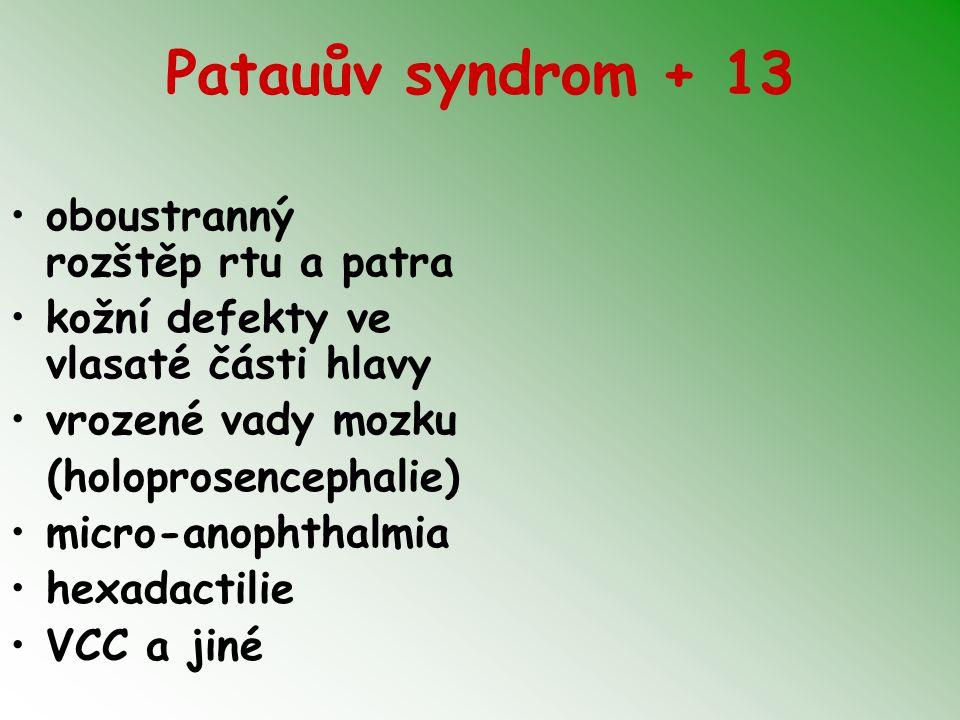 Patauův syndrom + 13 oboustranný rozštěp rtu a patra kožní defekty ve vlasaté části hlavy vrozené vady mozku (holoprosencephalie) micro-anophthalmia h