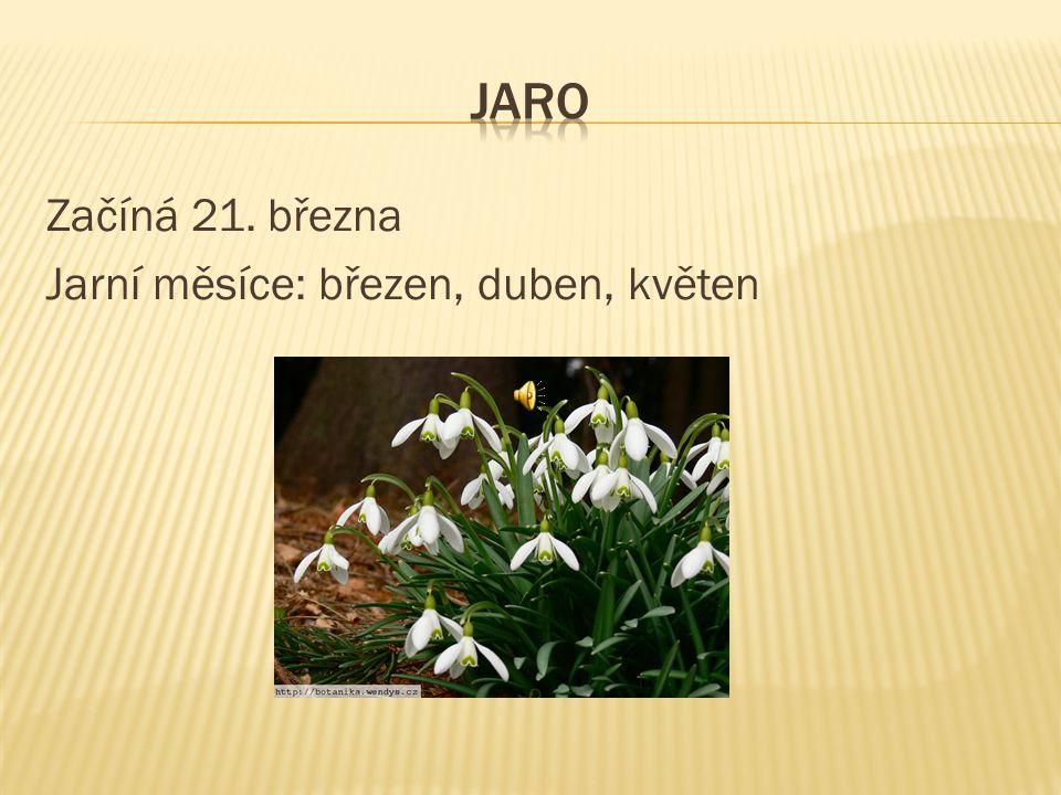 Začíná 21. března Jarní měsíce: březen, duben, květen