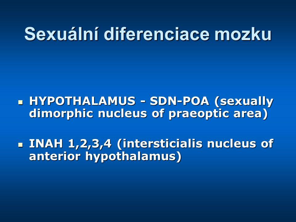 Sexuální diferenciace mozku HYPOTHALAMUS - SDN-POA (sexually dimorphic nucleus of praeoptic area) HYPOTHALAMUS - SDN-POA (sexually dimorphic nucleus of praeoptic area) INAH 1,2,3,4 (intersticialis nucleus of anterior hypothalamus) INAH 1,2,3,4 (intersticialis nucleus of anterior hypothalamus)