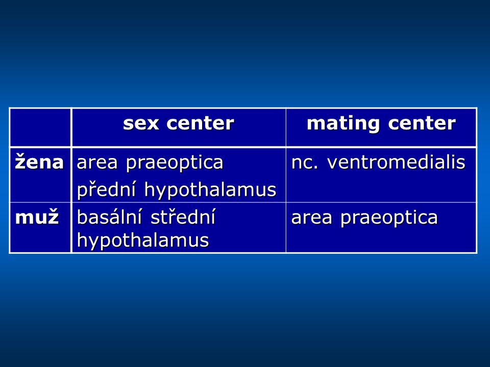 sex center mating center žena area praeoptica přední hypothalamus nc.