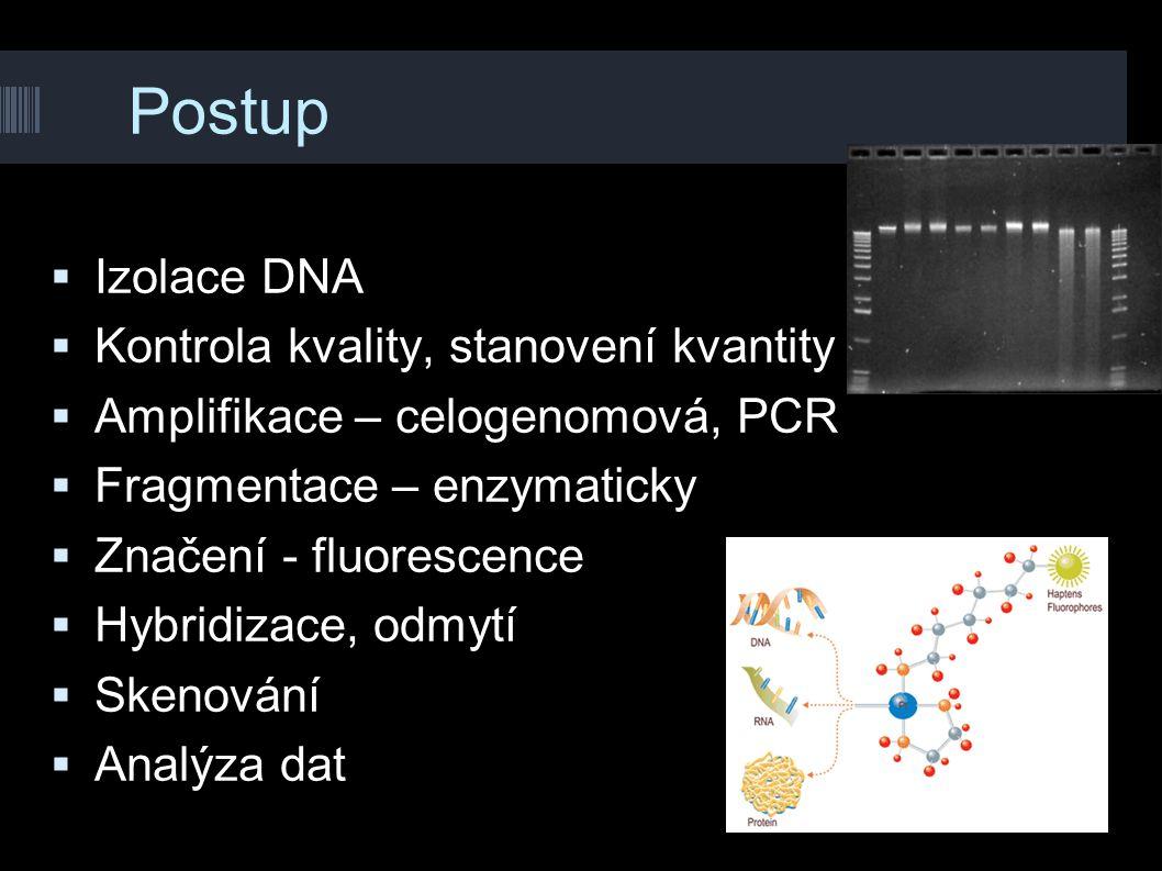 Postup  Izolace DNA  Kontrola kvality, stanovení kvantity  Amplifikace – celogenomová, PCR  Fragmentace – enzymaticky  Značení - fluorescence  H