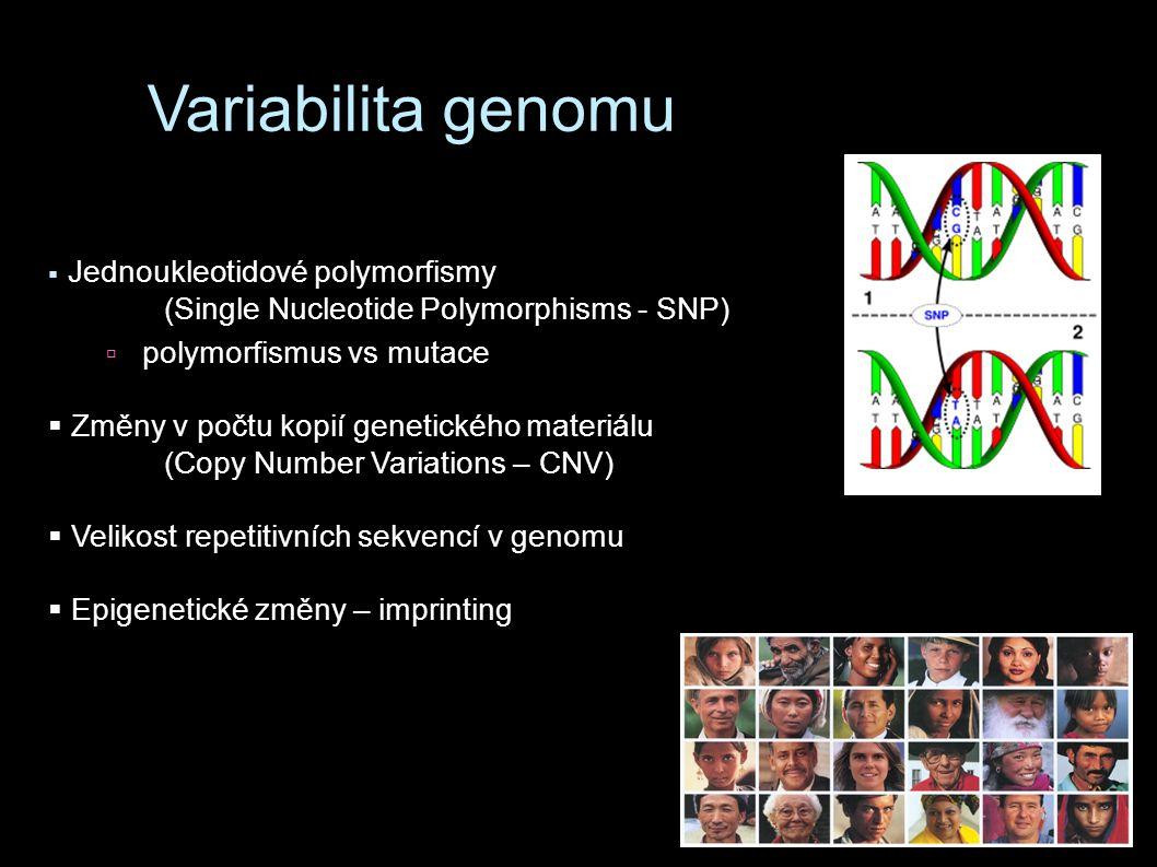 Variabilita genomu  Jednoukleotidové polymorfismy (Single Nucleotide Polymorphisms - SNP)  polymorfismus vs mutace  Změny v počtu kopií genetického