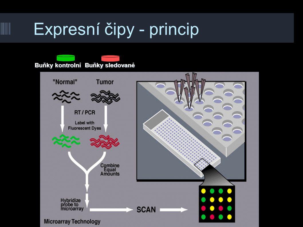 Expresní čipy - princip Buňky sledované Buňky kontrolní