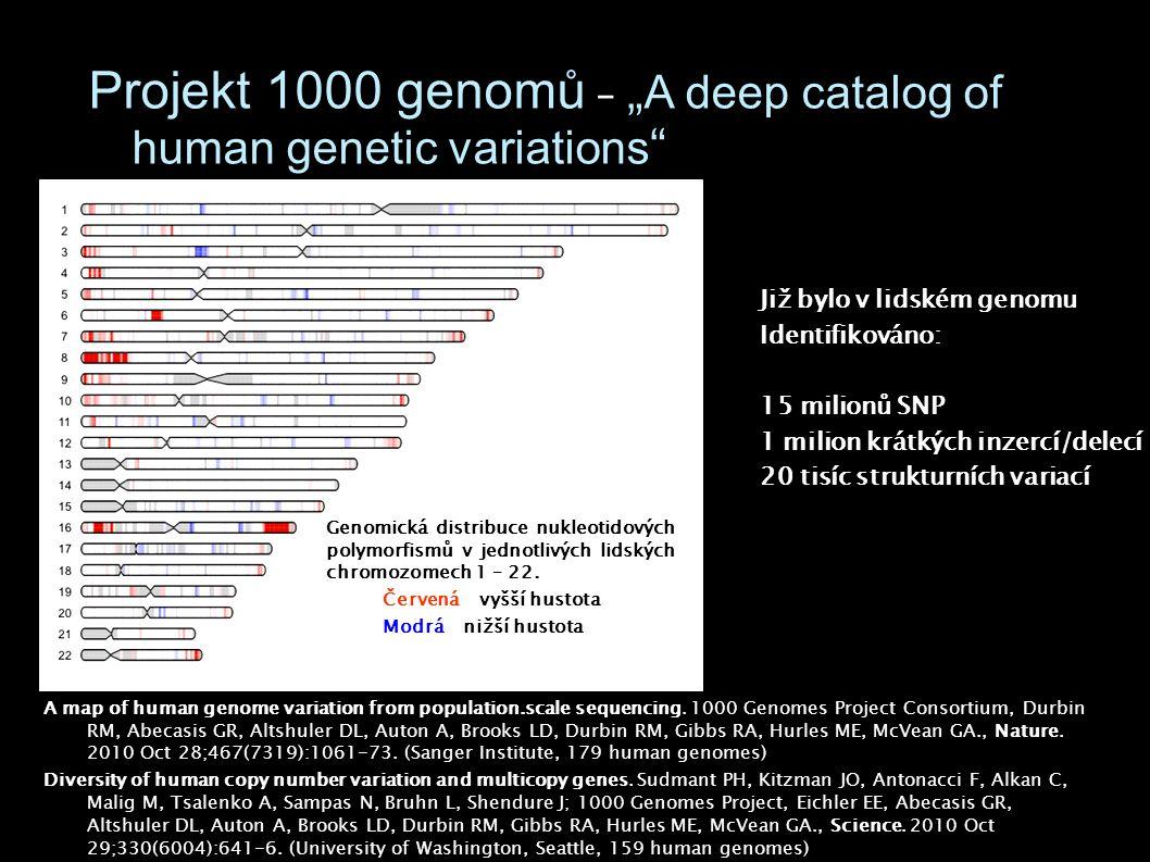 Genomická distribuce nukleotidových polymorfismů v jednotlivých lidských chromozomech 1 – 22. Červená – vyšší hustota Modrá – nižší hustota Projekt 10