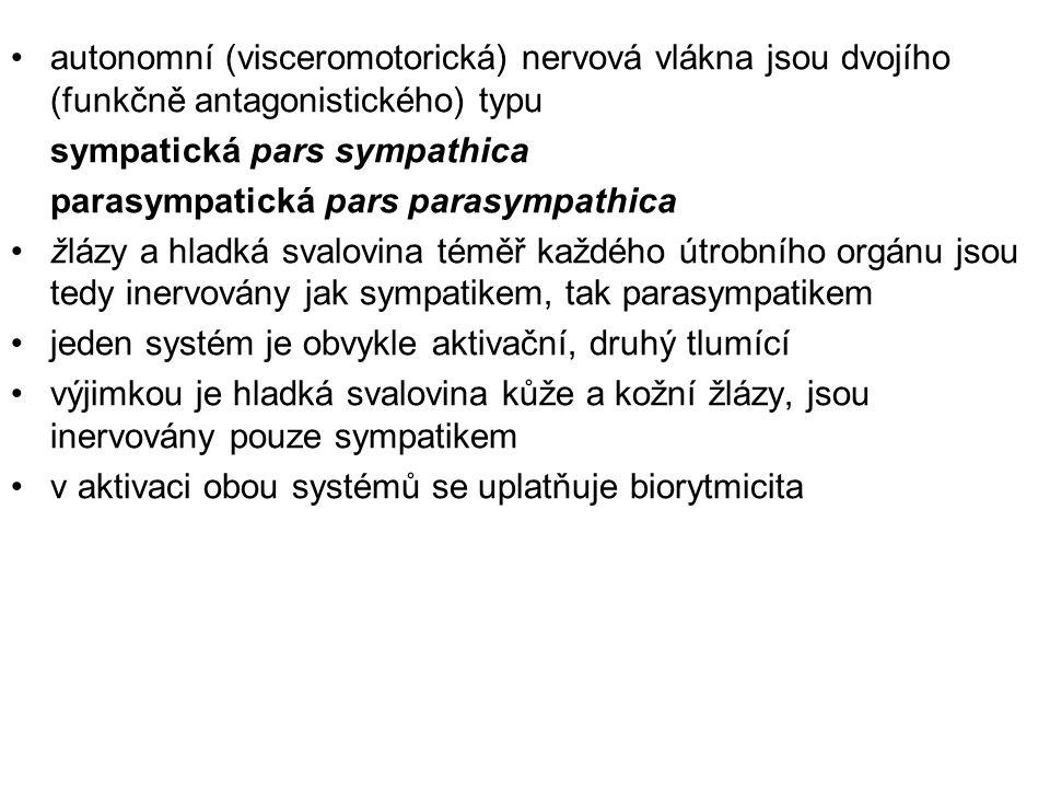 autonomní (visceromotorická) nervová vlákna jsou dvojího (funkčně antagonistického) typu sympatická pars sympathica parasympatická pars parasympathica