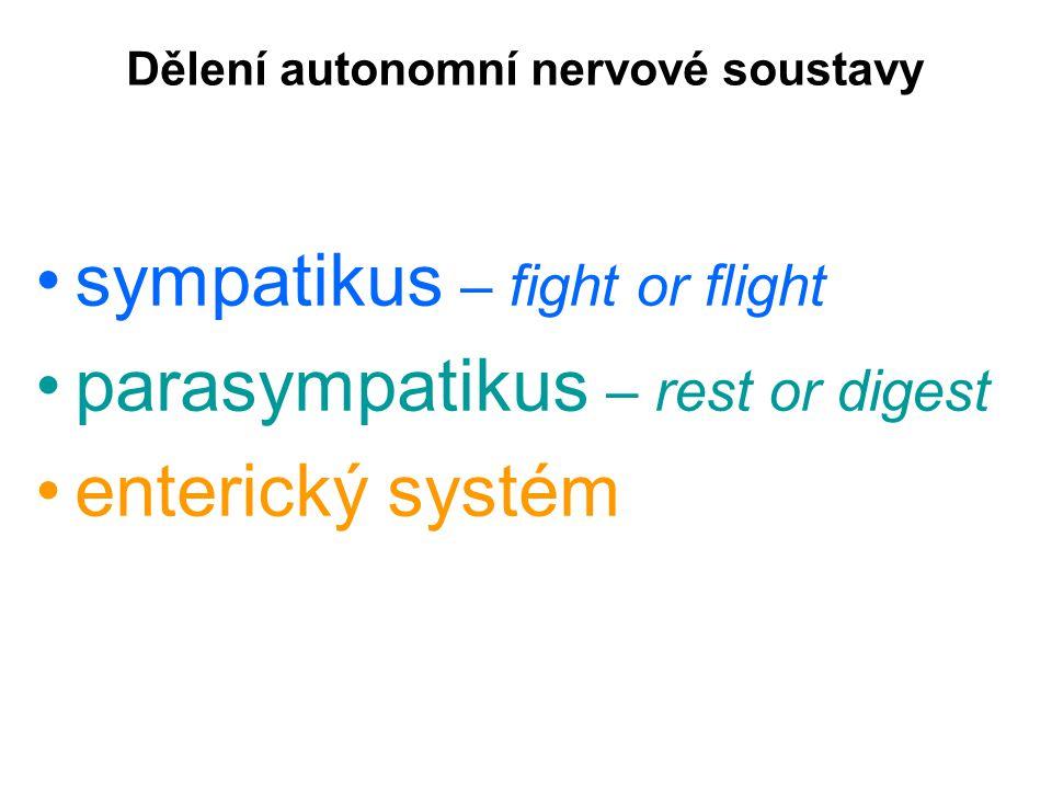 Zadní kořen vede jak somatosenzitivitu, tak i viscerosenzitivitu