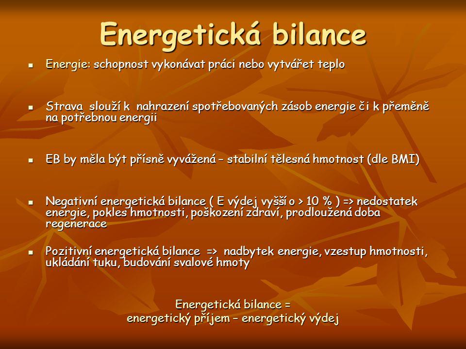 Energie: schopnost vykonávat práci nebo vytvářet teplo Energie: schopnost vykonávat práci nebo vytvářet teplo Strava slouží k nahrazení spotřebovaných