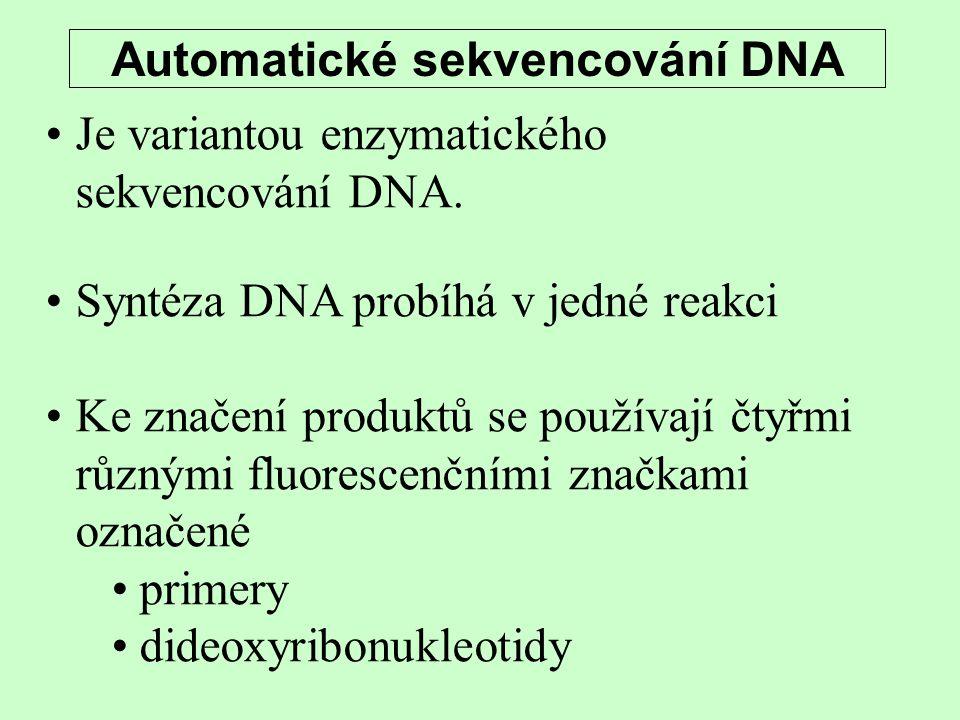Automatické sekvencování DNA Je variantou enzymatického sekvencování DNA. Syntéza DNA probíhá v jedné reakci Ke značení produktů se používají čtyřmi r