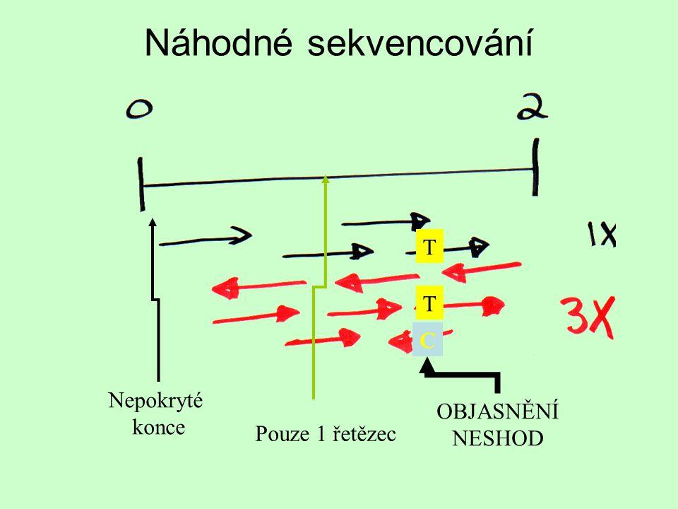 Náhodné sekvencování Nepokryté konce Pouze 1 řetězec OBJASNĚNÍ NESHOD T T C
