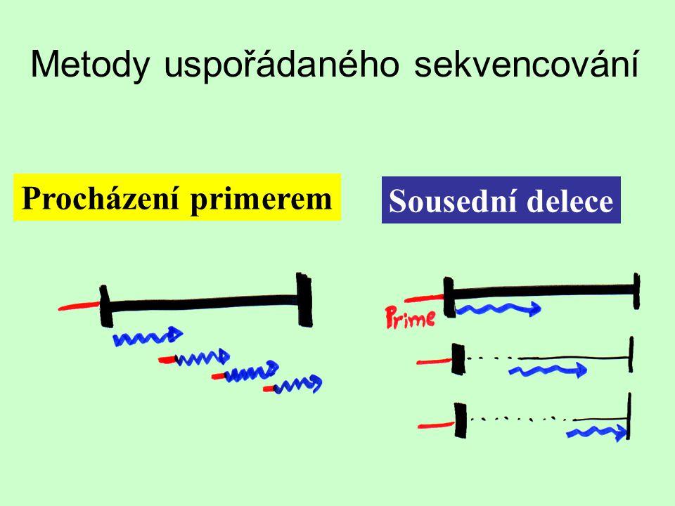Metody uspořádaného sekvencování Procházení primerem Sousední delece