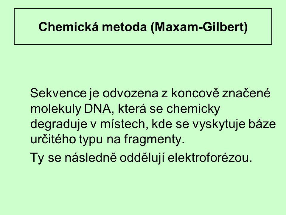 Chemická metoda (Maxam-Gilbert) Sekvence je odvozena z koncově značené molekuly DNA, která se chemicky degraduje v místech, kde se vyskytuje báze urči
