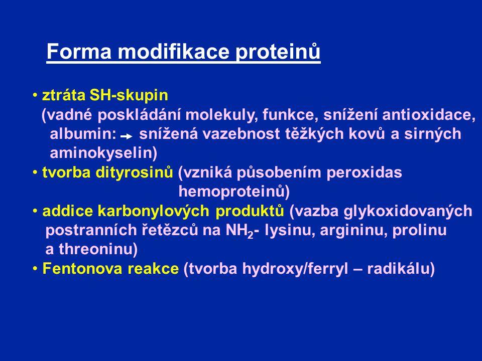 Forma modifikace proteinů ztráta SH-skupin (vadné poskládání molekuly, funkce, snížení antioxidace, albumin: snížená vazebnost těžkých kovů a sirných