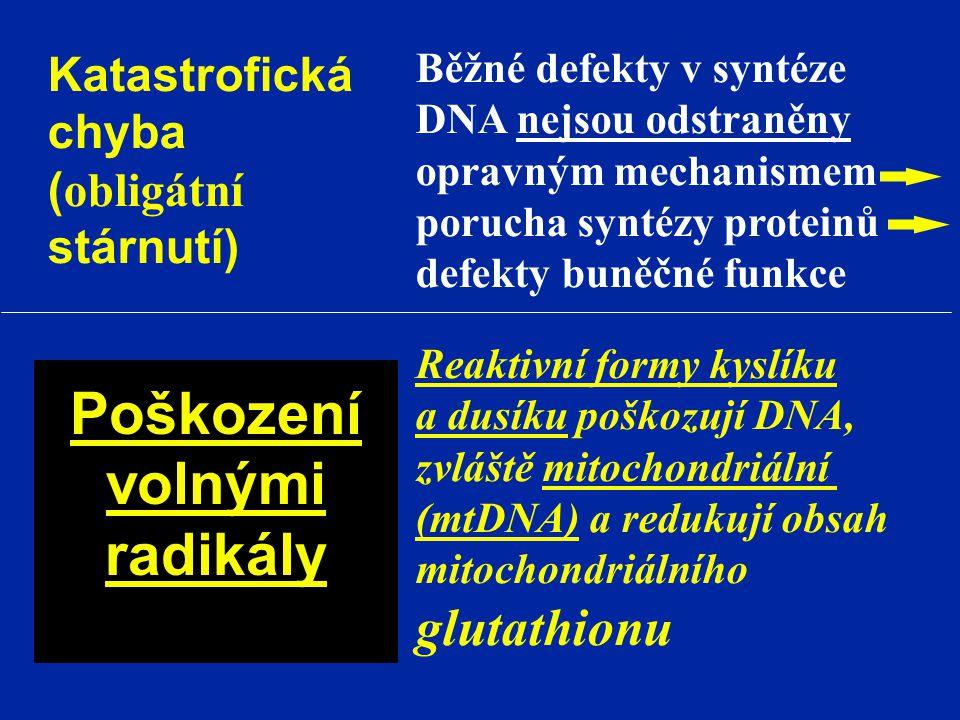 Katastrofická chyba ( obligátní stárnutí) Běžné defekty v syntéze DNA nejsou odstraněny opravným mechanismem porucha syntézy proteinů defekty buněčné