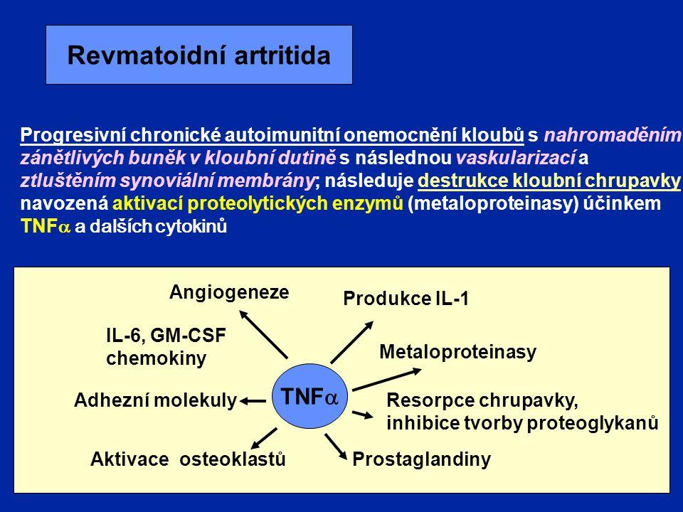 Revmatoidní artritida Progresivní chronické autoimunitní onemocnění kloubů s nahromaděním zánětlivých buněk v kloubní dutině s následnou vaskularizací