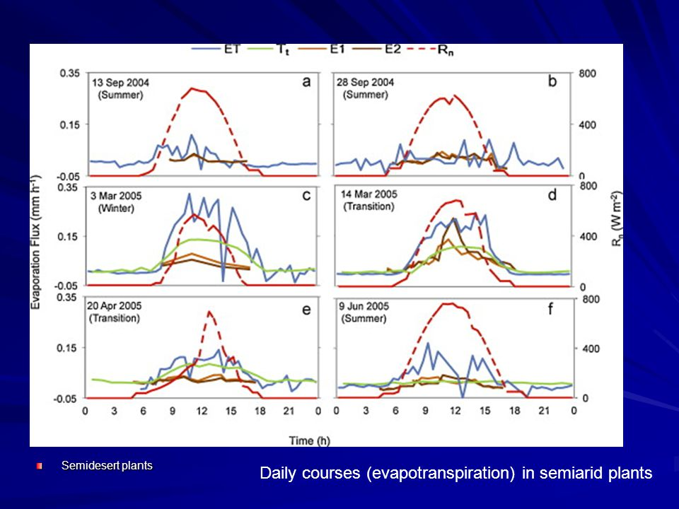 Semidesert plants Daily courses (evapotranspiration) in semiarid plants