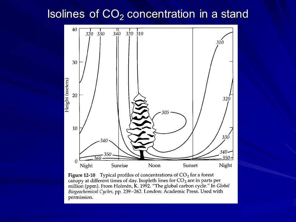 Isolines of CO 2 concentration in a stand