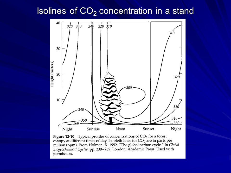 Stoma Výměna plynů mezi rostlinou a okolím: CO 2 H 2 O