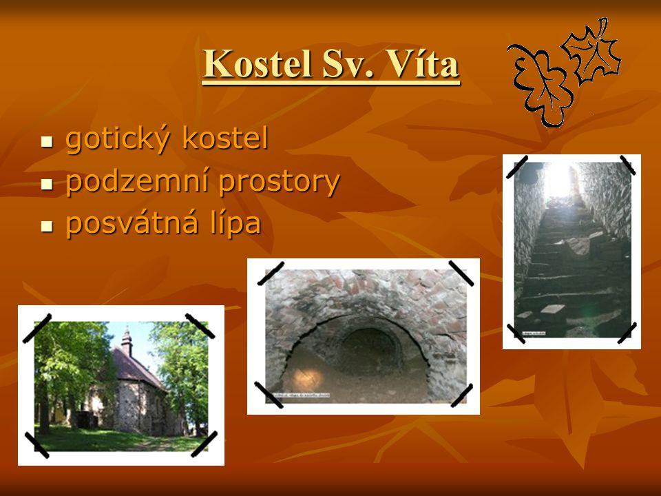 Kostel Sv. Víta gotický kostel gotický kostel podzemní prostory podzemní prostory posvátná lípa posvátná lípa