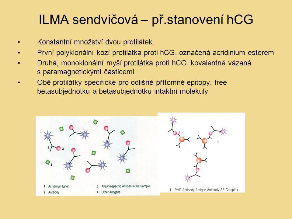 ILMA sendvičová – př.stanovení hCG Konstantní množství dvou protilátek. První polyklonální kozí protilátka proti hCG, označená acridinium esterem Druh