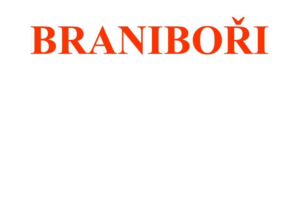 BRANIBOŘI