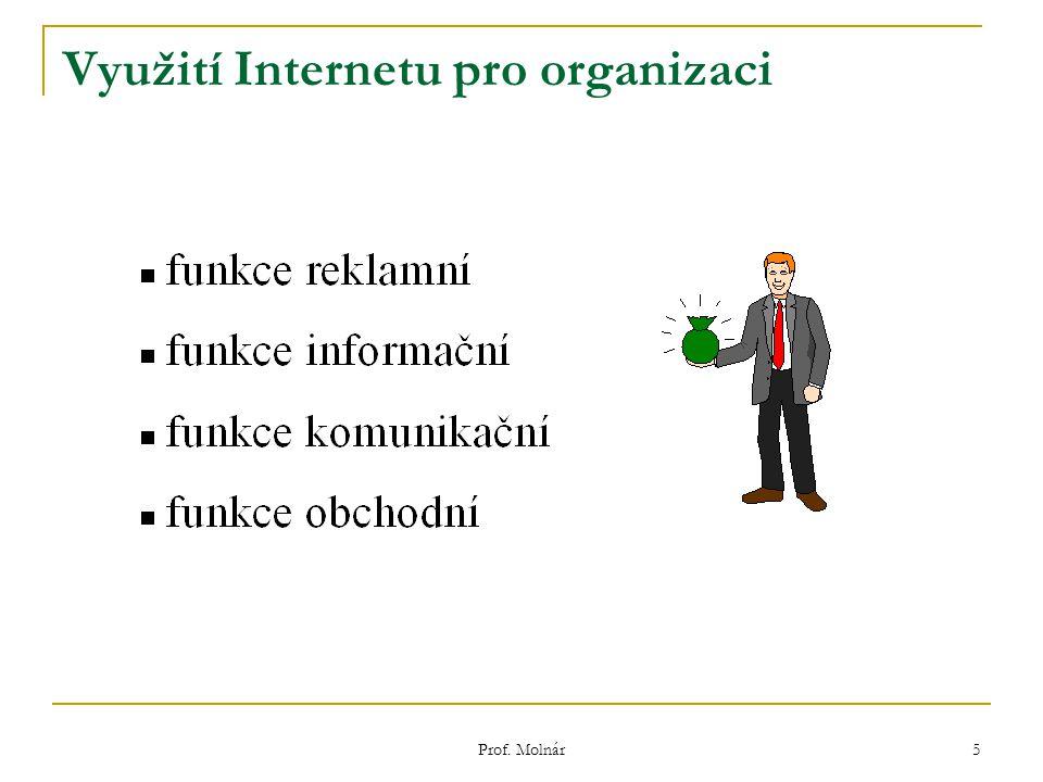 5 Využití Internetu pro organizaci