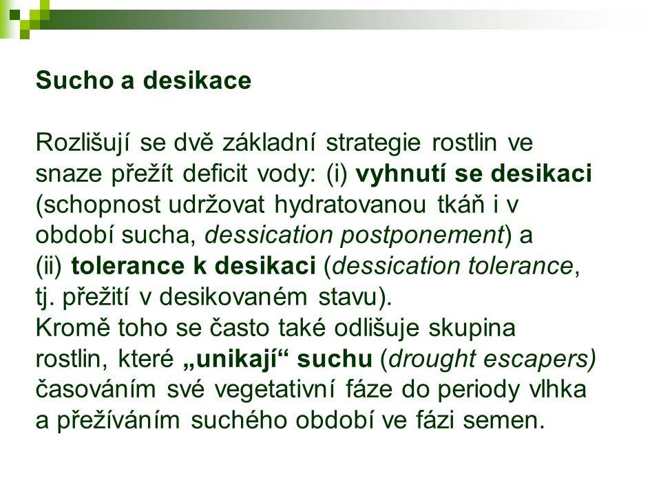 Sucho a desikace Rozlišují se dvě základní strategie rostlin ve snaze přežít deficit vody: (i) vyhnutí se desikaci (schopnost udržovat hydratovanou tkáň i v období sucha, dessication postponement) a (ii) tolerance k desikaci (dessication tolerance, tj.