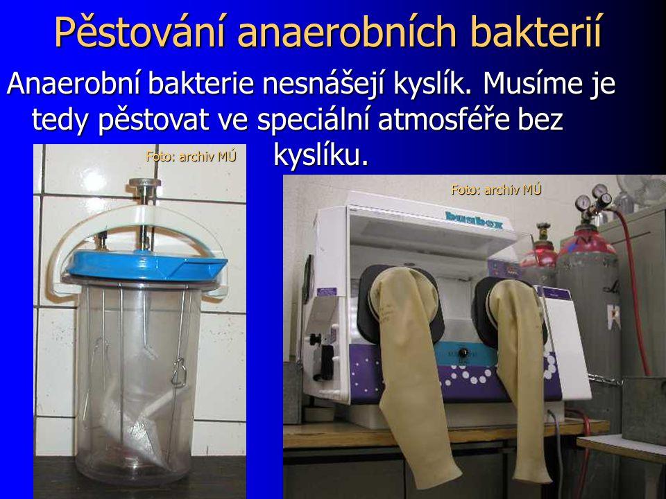 Pěstování anaerobních bakterií Anaerobní bakterie nesnášejí kyslík.