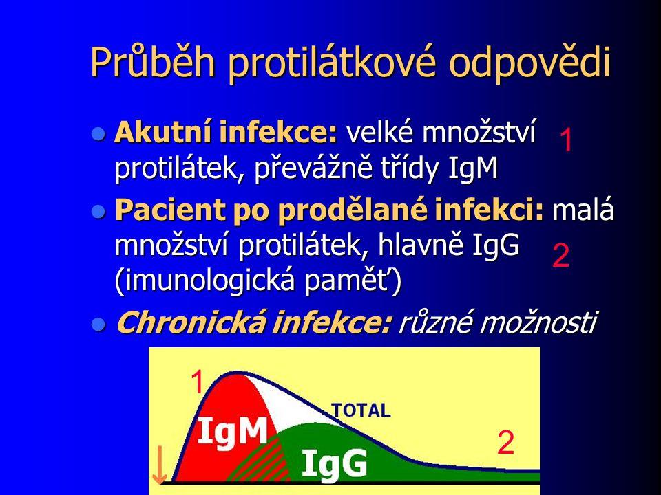 Průběh protilátkové odpovědi Akutní infekce: velké množství protilátek, převážně třídy IgM Akutní infekce: velké množství protilátek, převážně třídy IgM Pacient po prodělané infekci: malá množství protilátek, hlavně IgG (imunologická paměť) Pacient po prodělané infekci: malá množství protilátek, hlavně IgG (imunologická paměť) Chronická infekce: různé možnosti Chronická infekce: různé možnosti 1 1 2 2