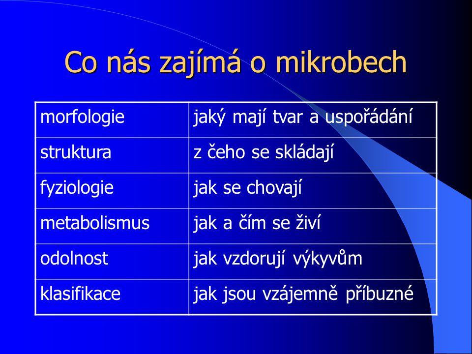 Co nás zajímá o mikrobech morfologiejaký mají tvar a uspořádání strukturaz čeho se skládají fyziologiejak se chovají metabolismusjak a čím se živí odolnostjak vzdorují výkyvům klasifikacejak jsou vzájemně příbuzné