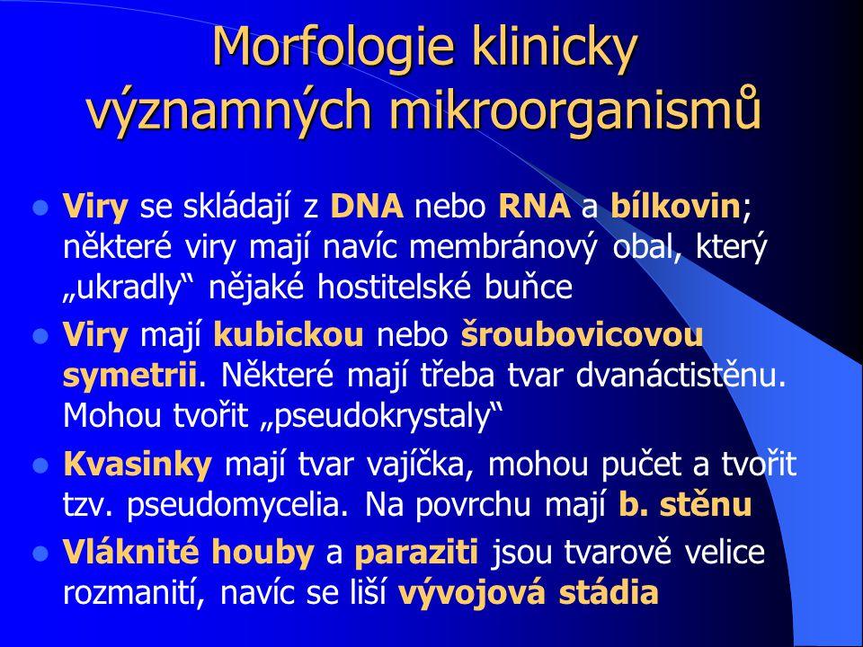 """Morfologie klinicky významných mikroorganismů Viry se skládají z DNA nebo RNA a bílkovin; některé viry mají navíc membránový obal, který """"ukradly nějaké hostitelské buňce Viry mají kubickou nebo šroubovicovou symetrii."""