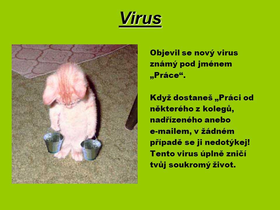 """Virus Objevil se nový virus známý pod jménem """"Práce ."""