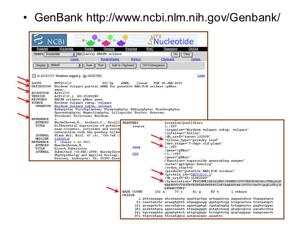 GenBank http://www.ncbi.nlm.nih.gov/Genbank/