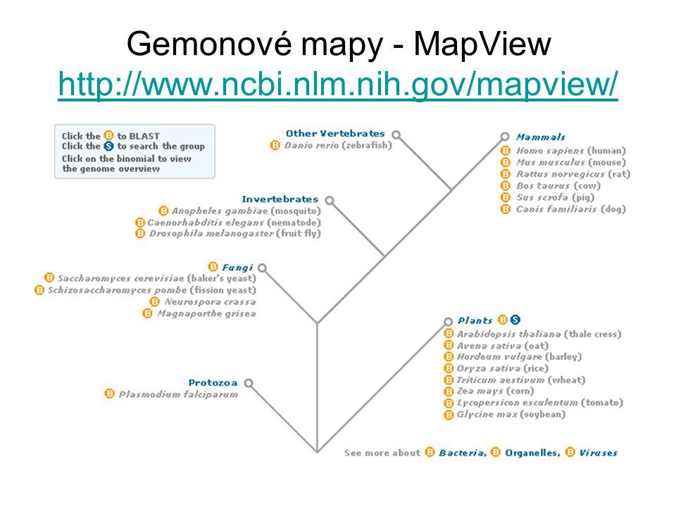 Gemonové mapy - MapView http://www.ncbi.nlm.nih.gov/mapview/ http://www.ncbi.nlm.nih.gov/mapview/