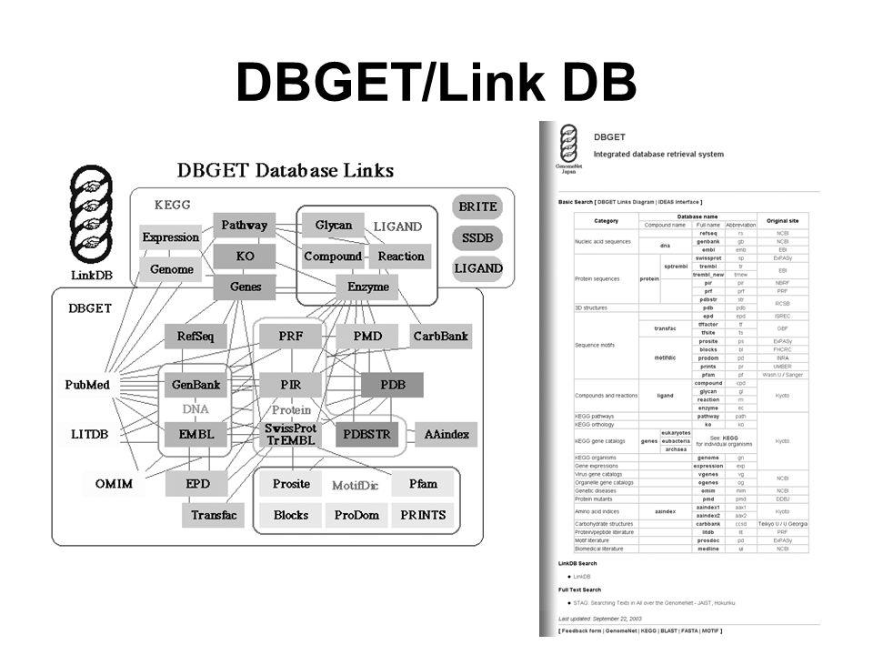 DBGET/Link DB